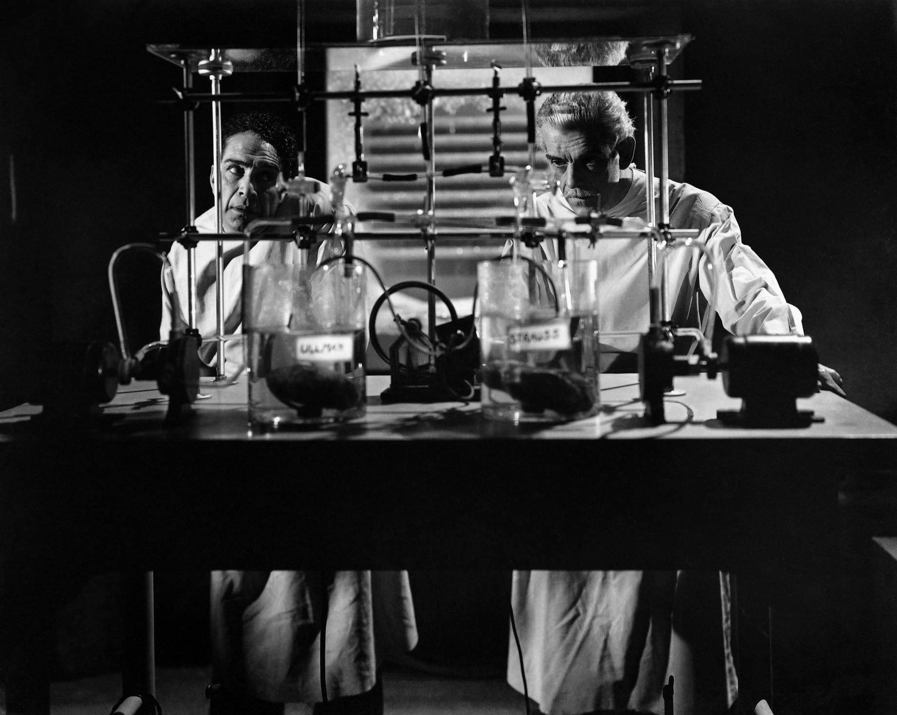 Boris Karloff With J. Carroll Naish