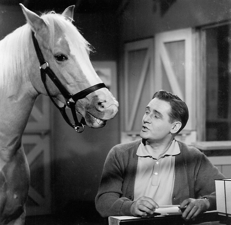 Alan Young, the Affable Owner on 'Mister Ed,' Dies at 96