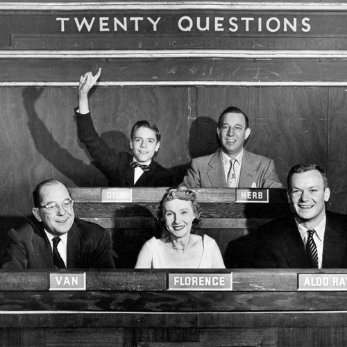 TWENTY QUESTIONS (20 QUESTIONS)