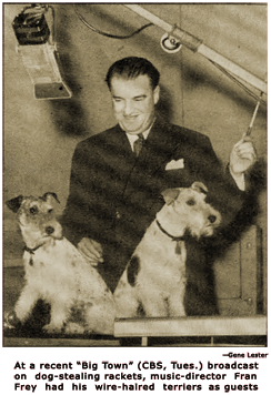 Music director Fran Frey brings his two wire-haired terriers to the studio for a broadcast about a dog-stealing racket.