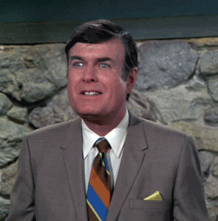 Steve Dunne appearing in The Brady Bunch from 1971