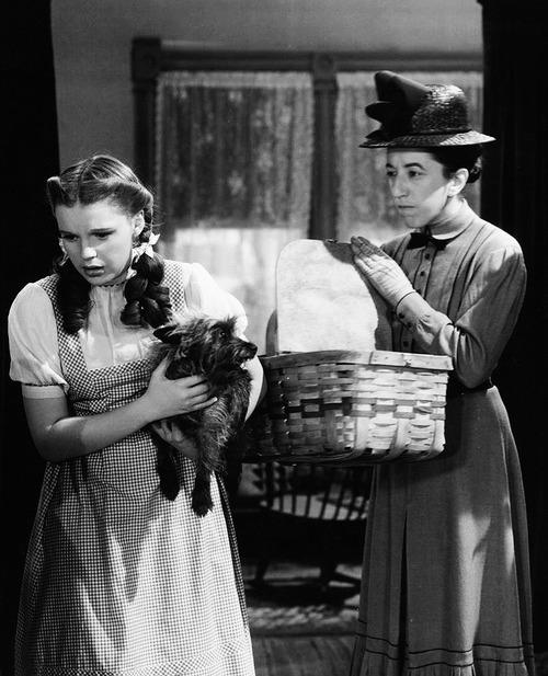 Judy Garland and Margaret Hamilton in 'The Wizard of Oz'