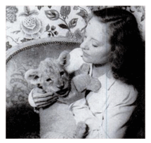 Tallulah with her real lion cub 'Winston Churchill' a gift to herself while in Reno obtaining her divorce from John Emery
